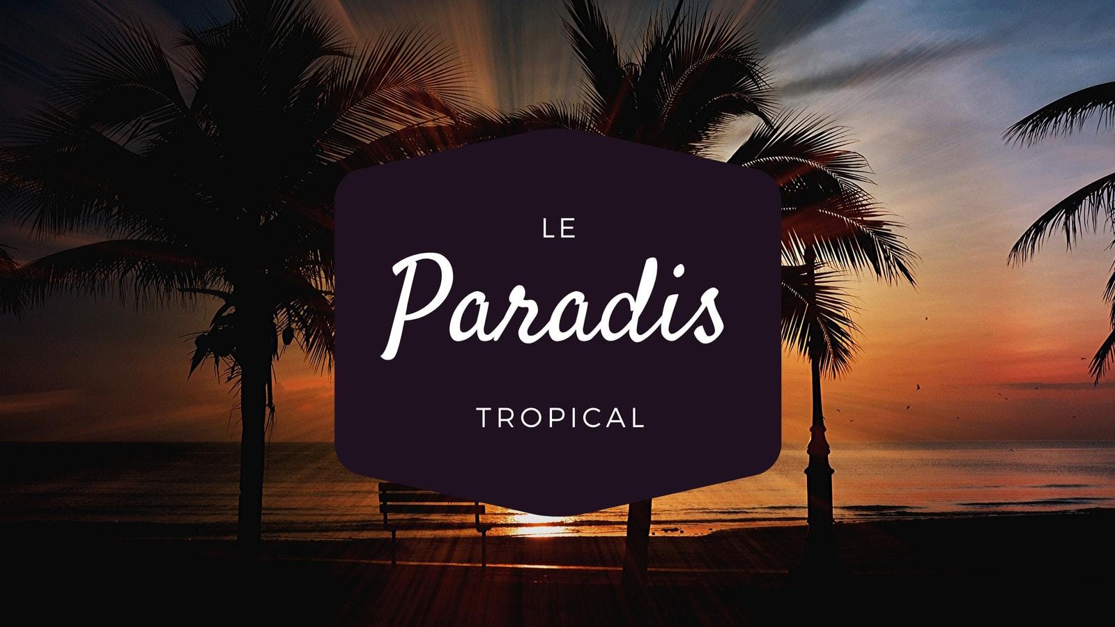 Nuit Tropical Océan Ordinateur Fond d'écran