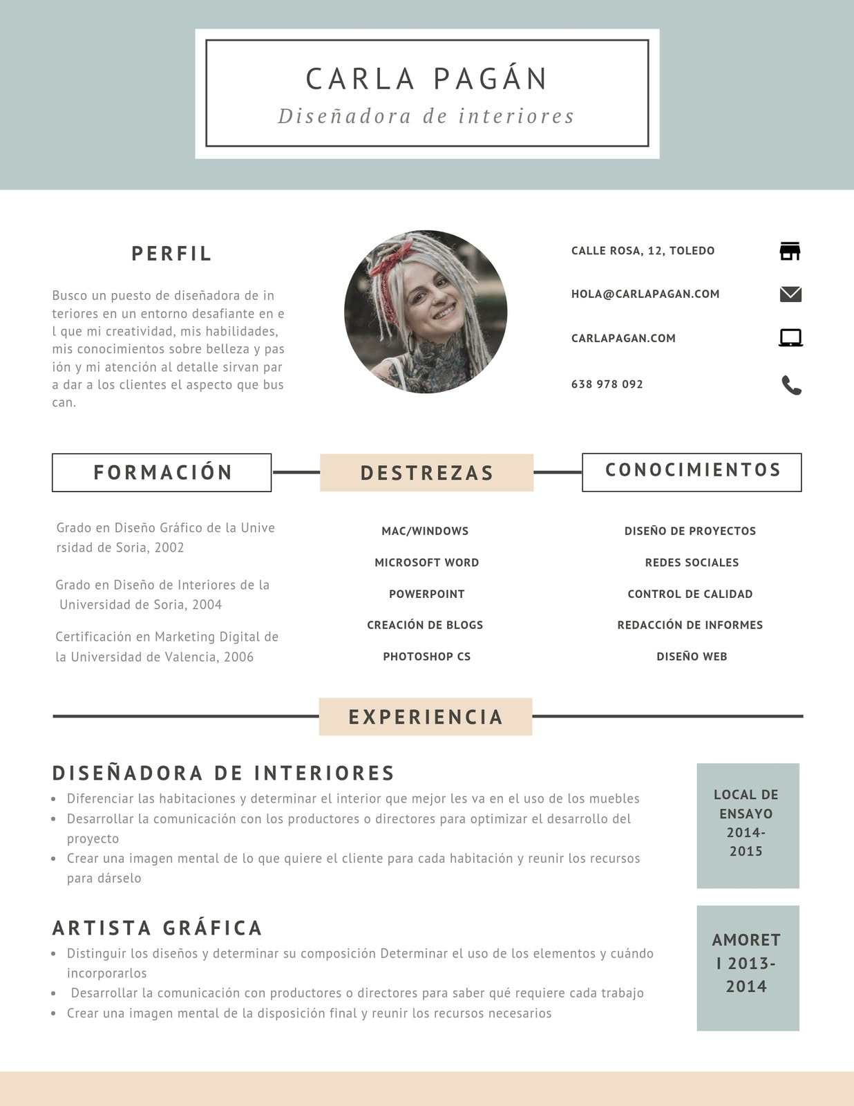 Curriculum Vitae Diseño Rosa Azul