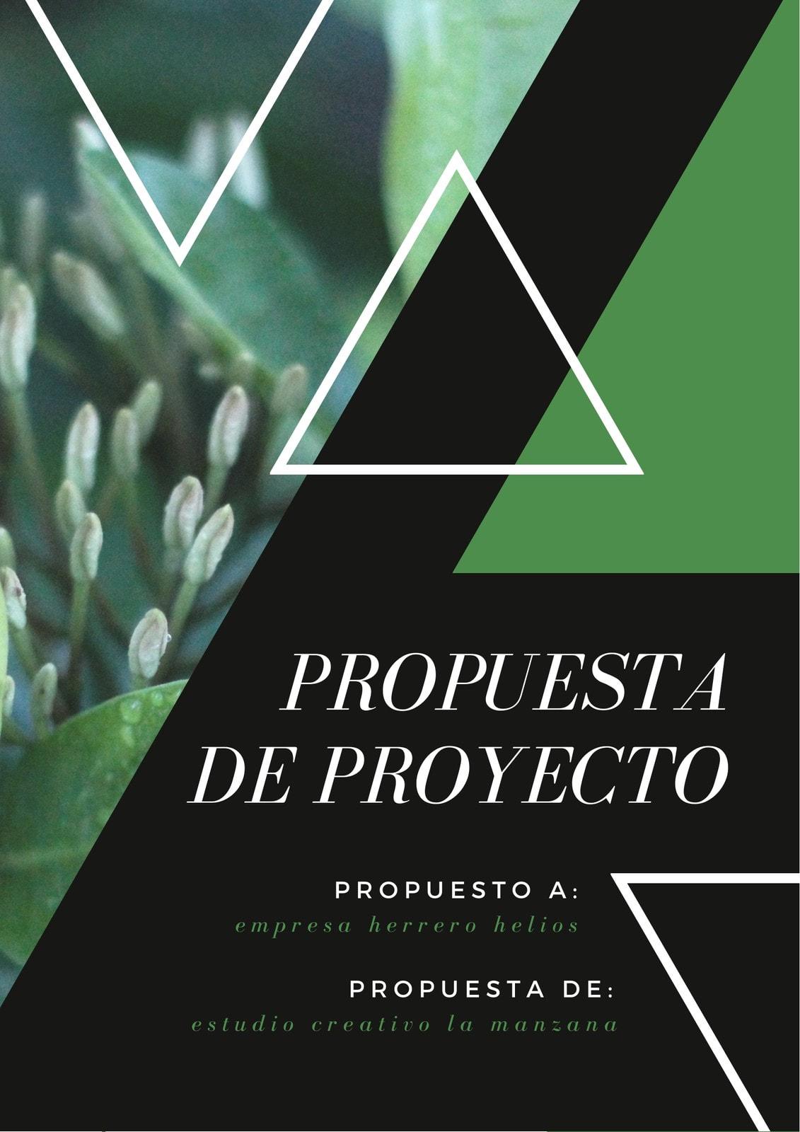 Verde Negro Foto Naturaleza Triángulos Proyecto General Propuesta