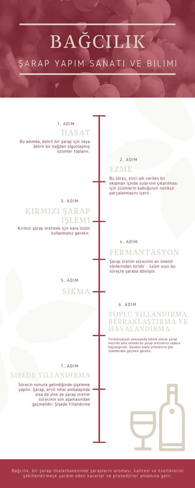Sade Kırmızı Şarap Zaman Çizelgesi - İnfografik