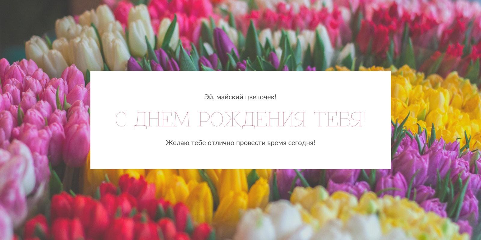 Цветок Фото День рождения Поздравления Twitter Публикация
