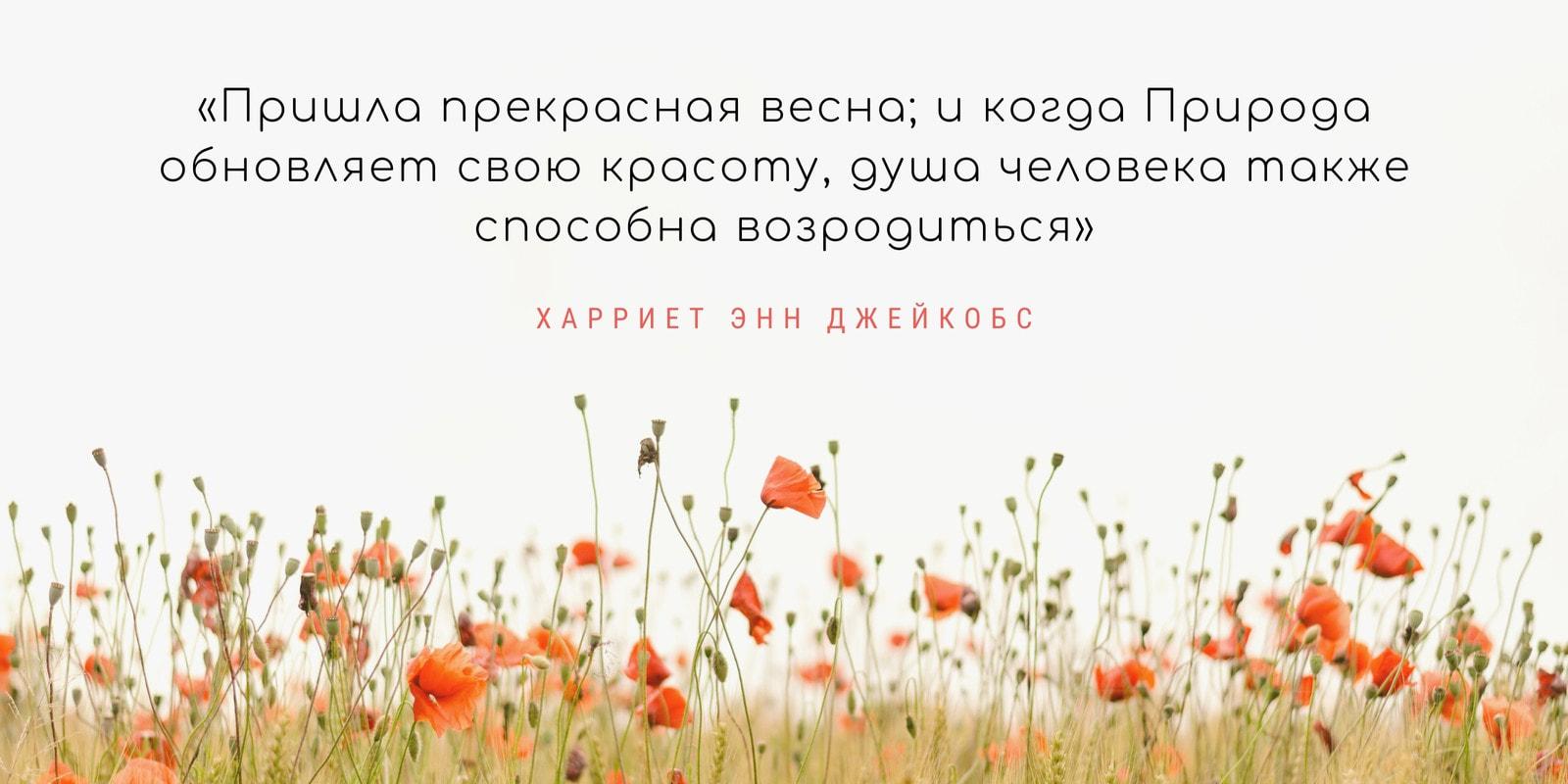 Кремово-персиковая Фотография Цитата о Весне Публикация в Twitter
