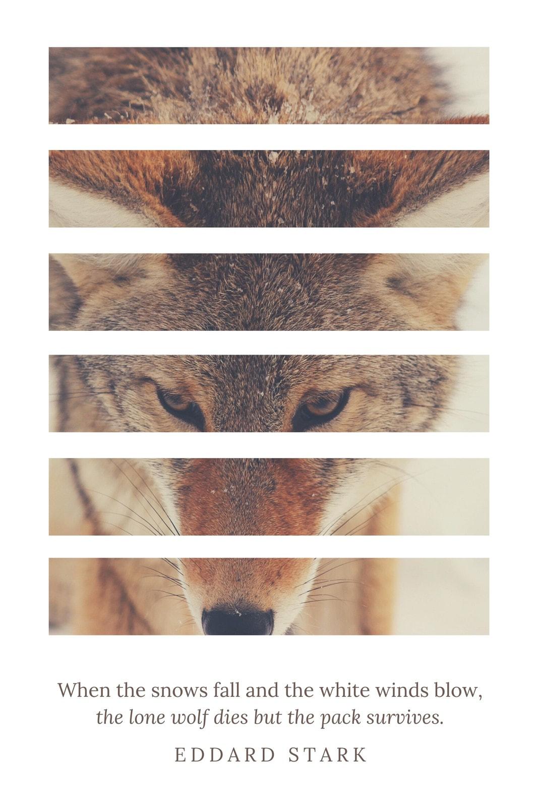 Wolf Eddard Stark Quote Tumblr Graphic