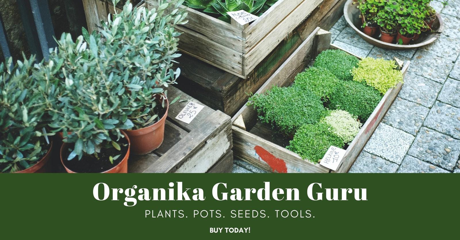 Green Organic Garden Photo Facebook Ad