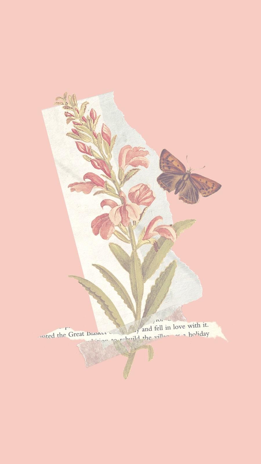 Розовые Цветок и Бабочка Телефонные Обои
