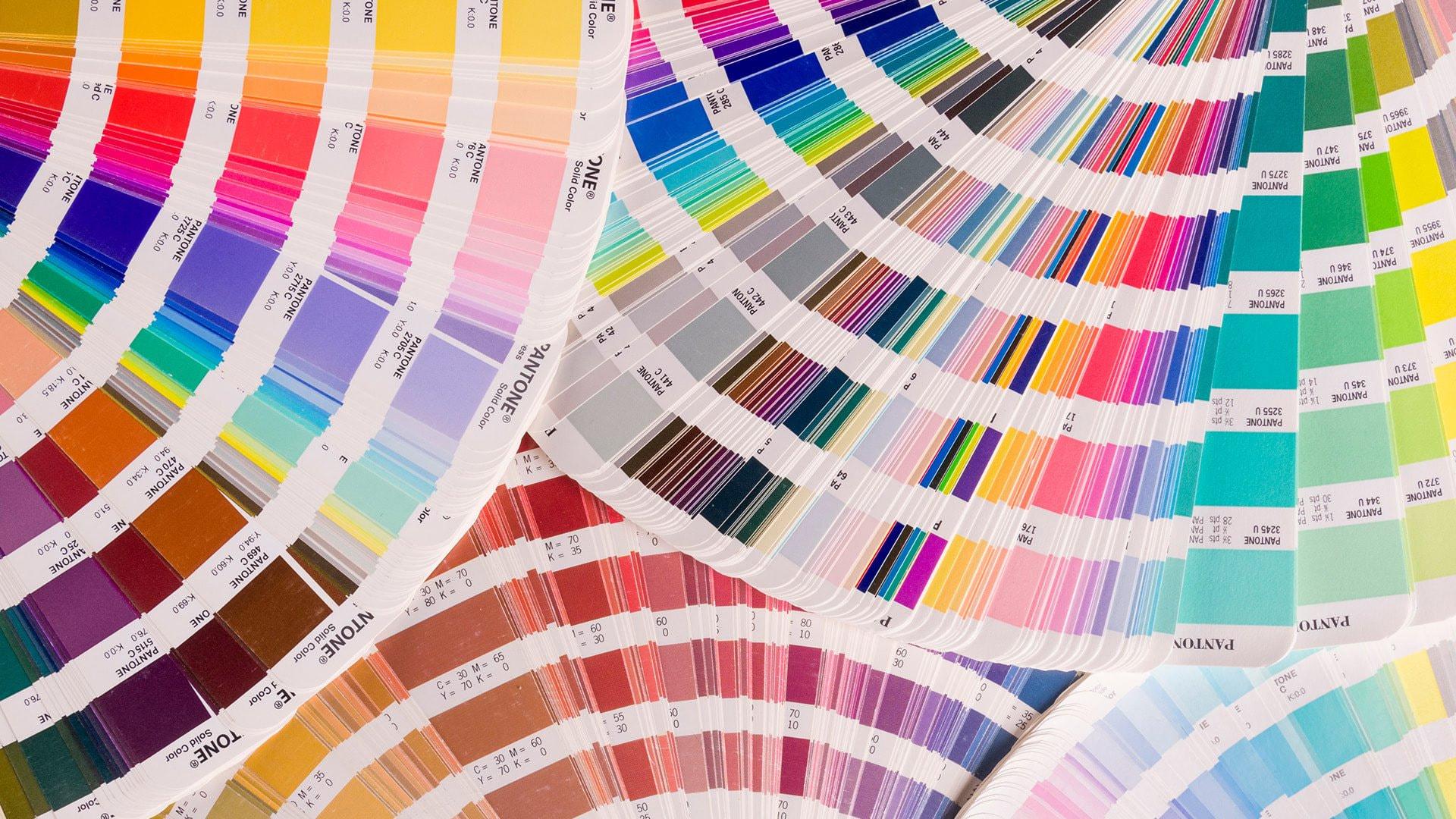 color palette card, color inspiration secrets