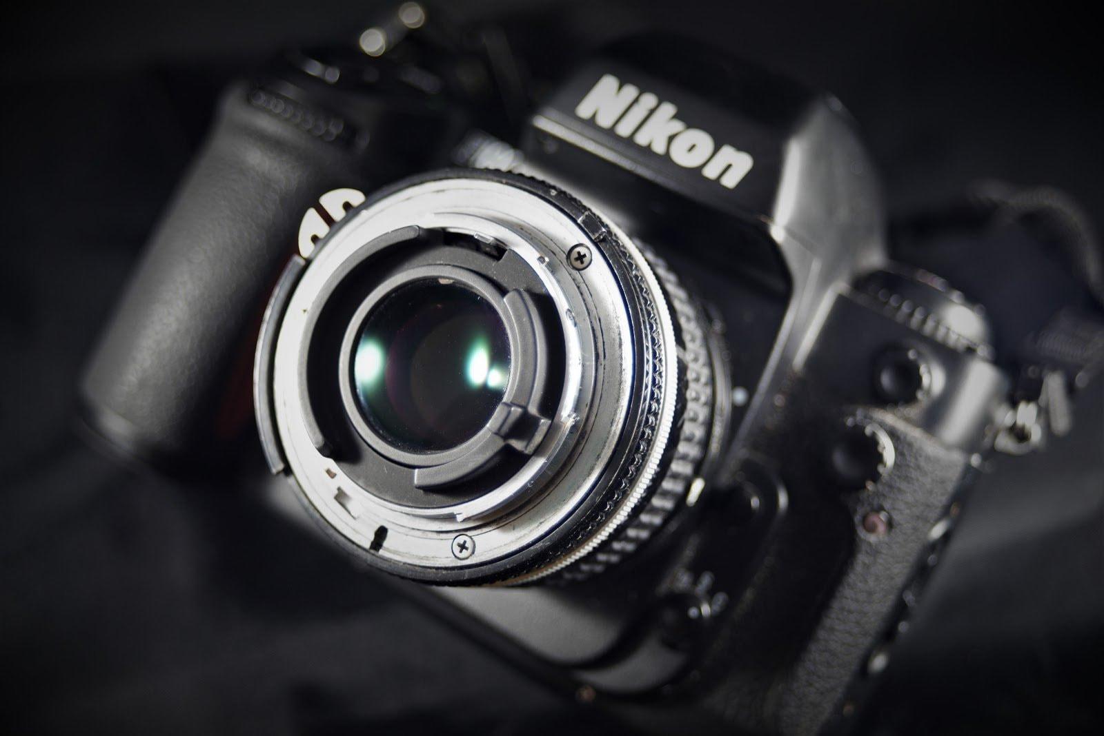 macro-photography-chad-verzosa