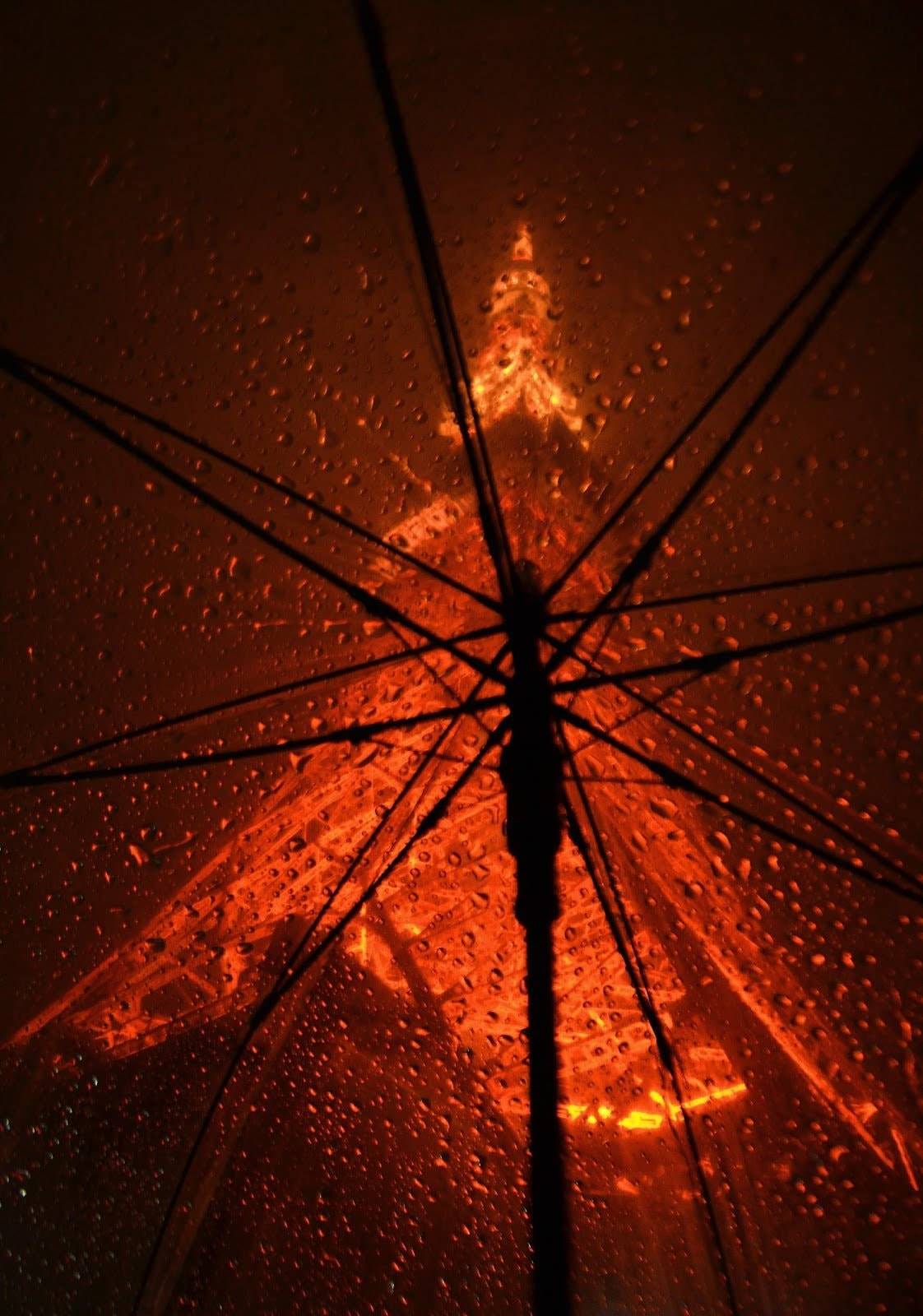 Tokyo tower in the rain seen from under a translucent umbrella by Brenda Alvarez