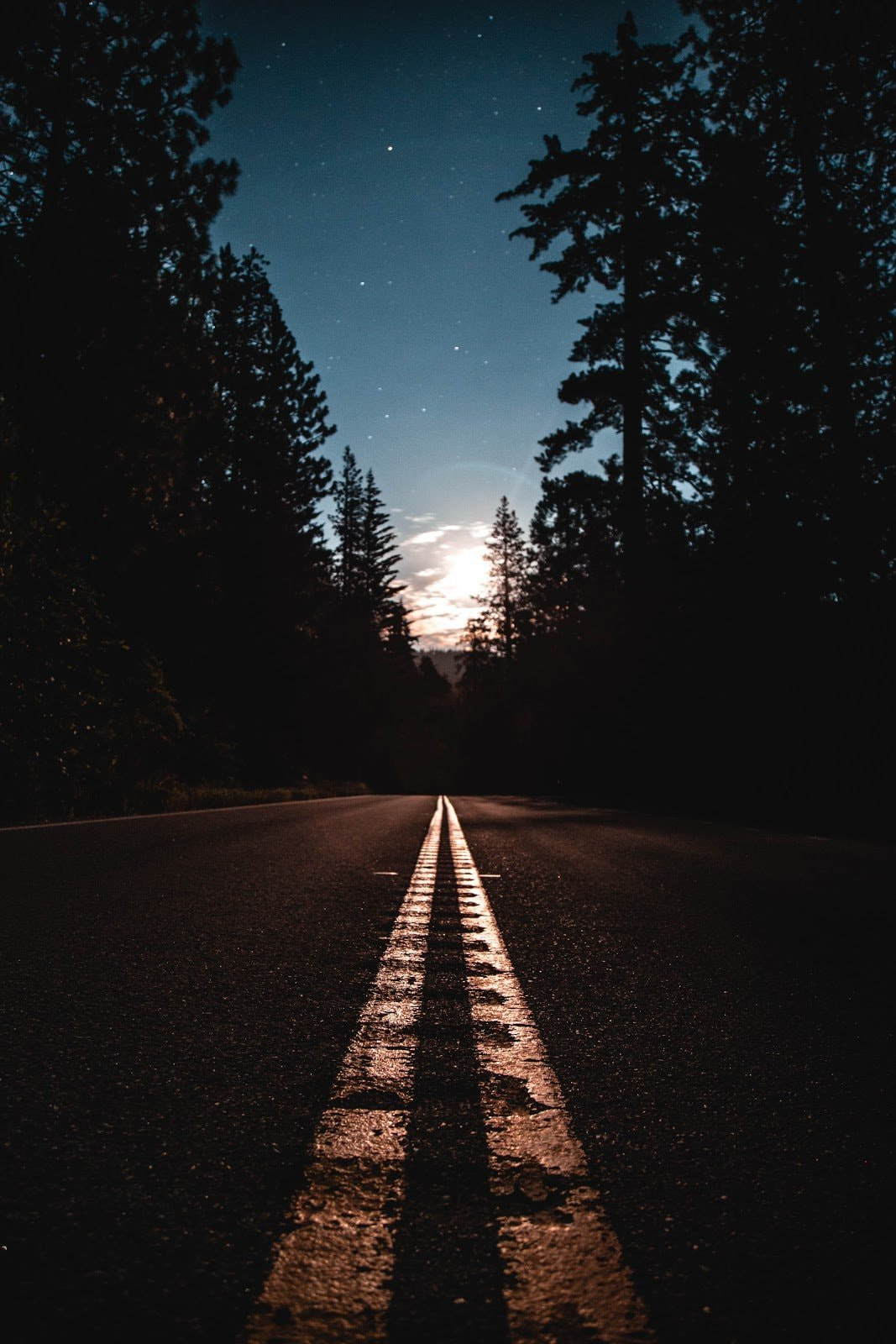 Empty road bordered by trees at night by Jake Blucker