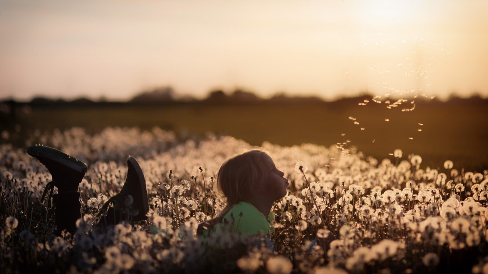 Golden hour photography of a girl lying in a field blowing on a dandelio by Johannes Plenio