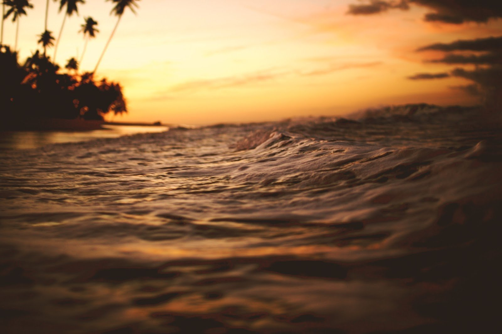 Beach during golden hour photography by Ben Ostrower