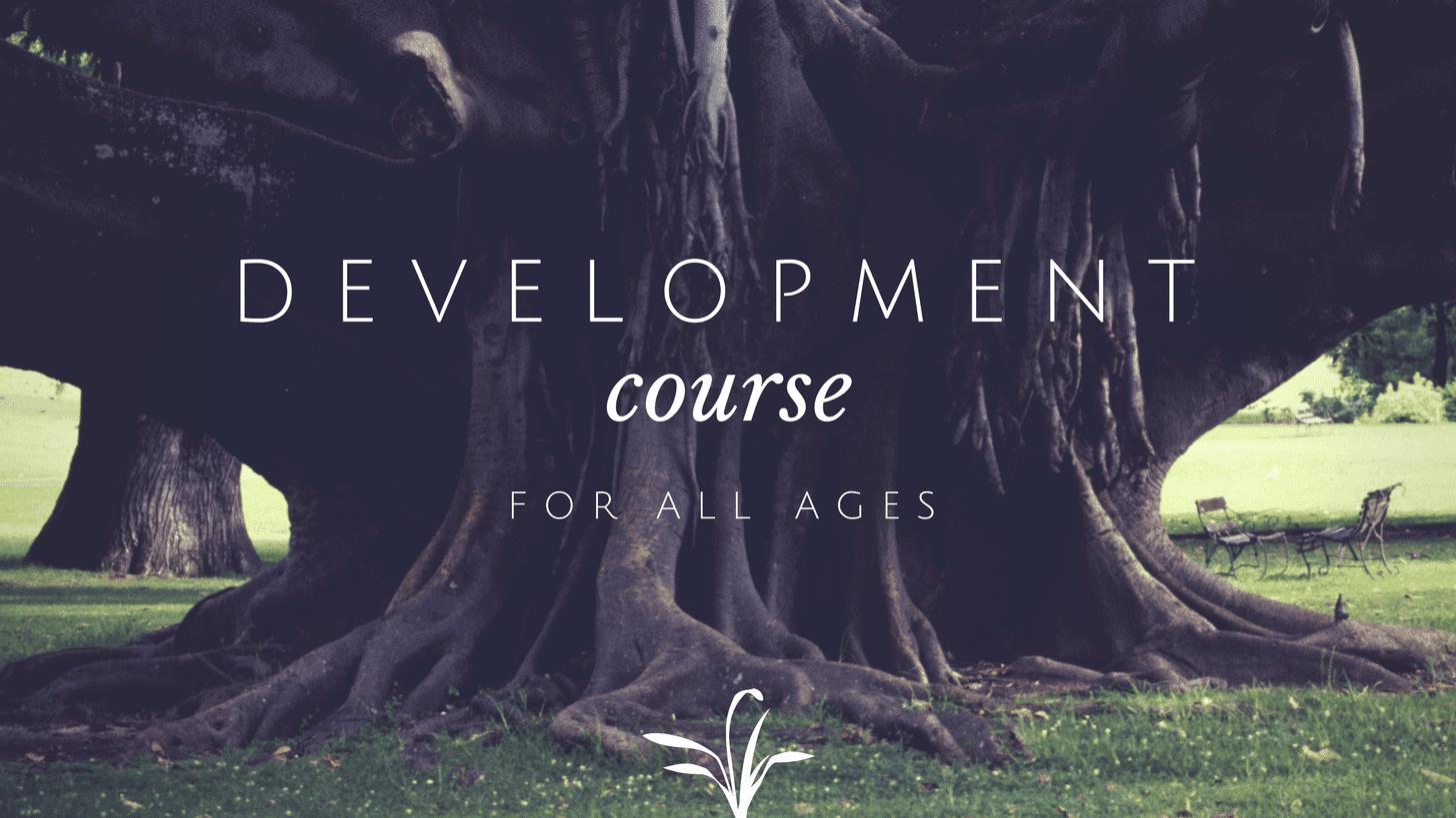 Development Course blog header template