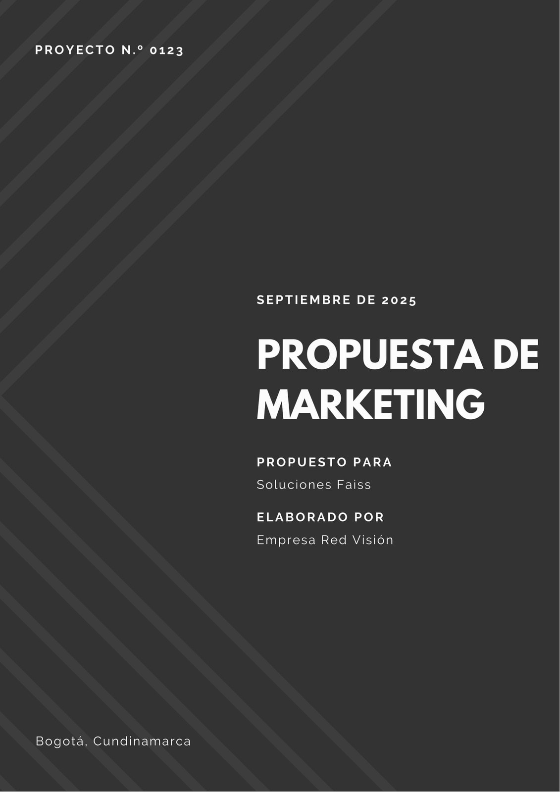 Negro y Blanco Líneas Diagonales Propuesta de Marketing