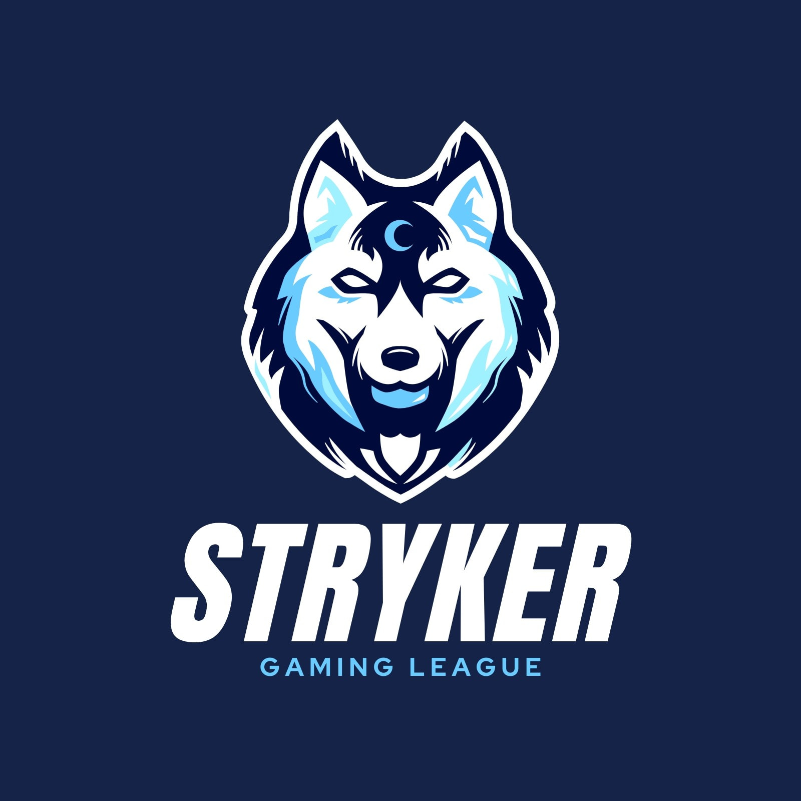Blue and White Gaming Logo