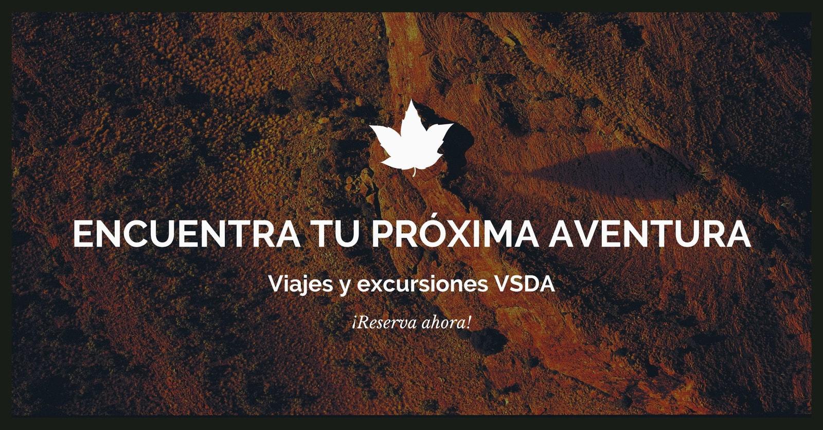 Marrón Foto Viajes Facebook Anuncio