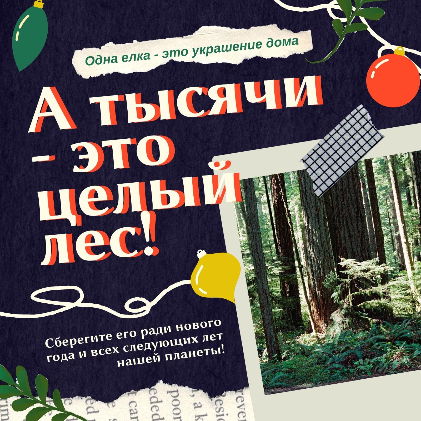 Цветная новогодняя публикация в Instagram с фотографией леса