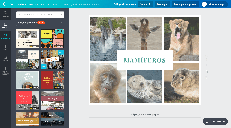 Collage de animales