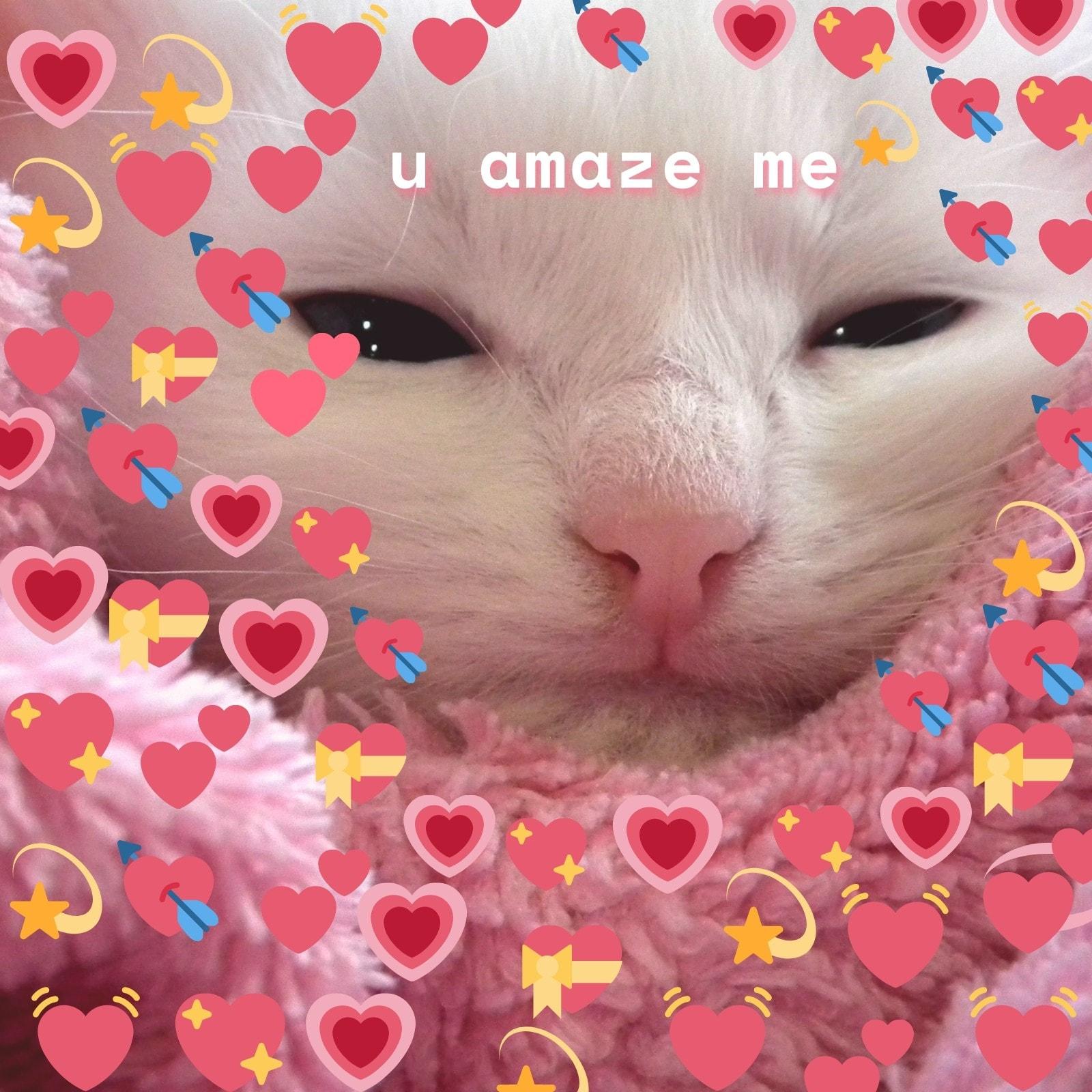 Cat Emoji Bomb Square Animal Meme