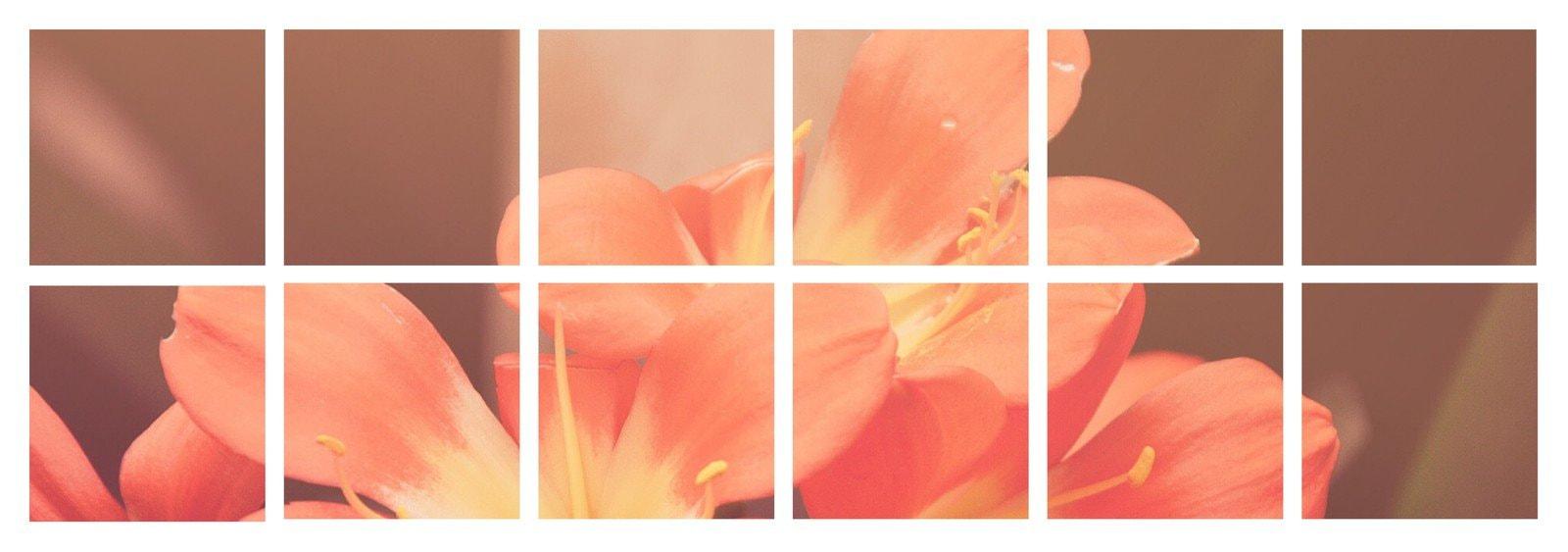 Floral Grid Tumblr Banner
