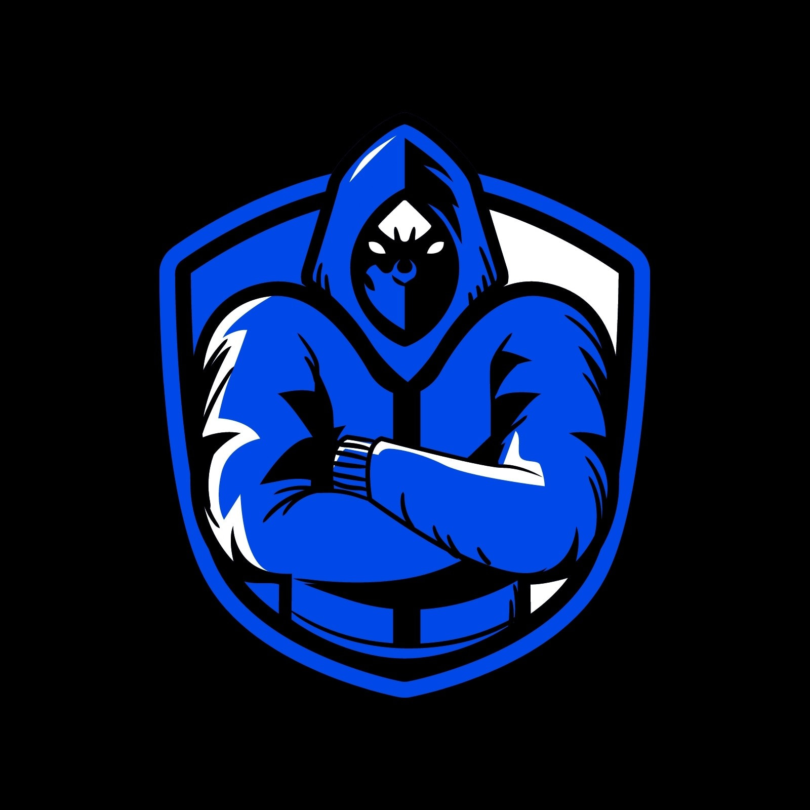 Blue and Black Clean Minimalism Twitch Profile Picture