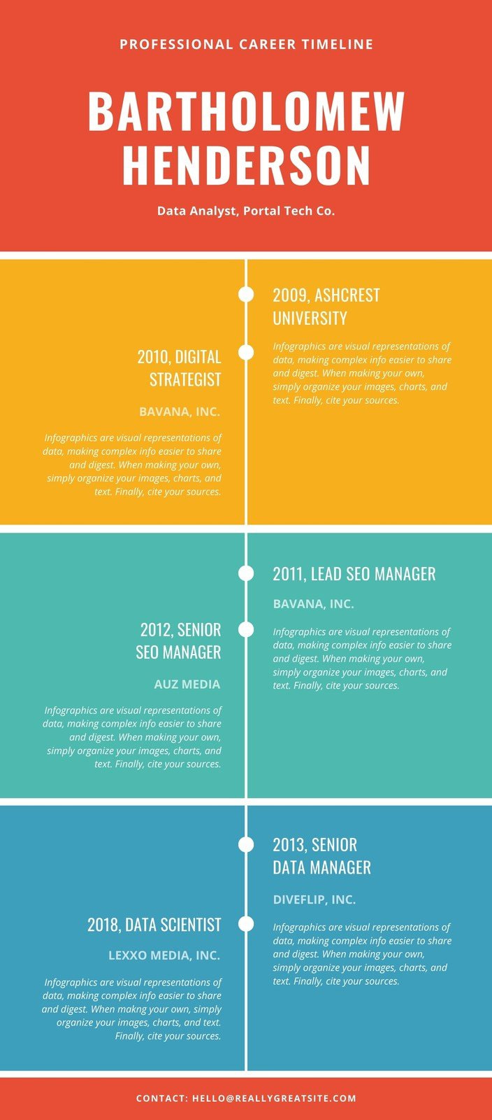 Colorful Career Timeline Infographic