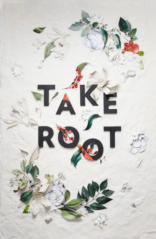 creative-procrastination-take-root