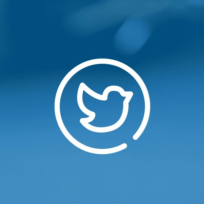 Twitter (3)