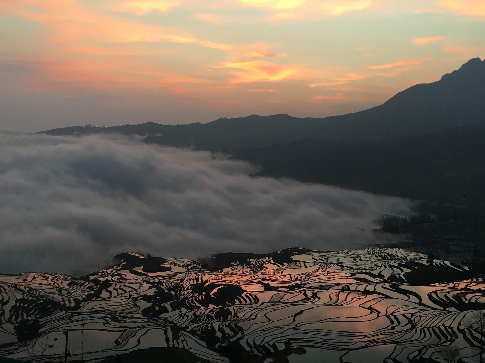 Rice Terraces (Yuanyuang), China