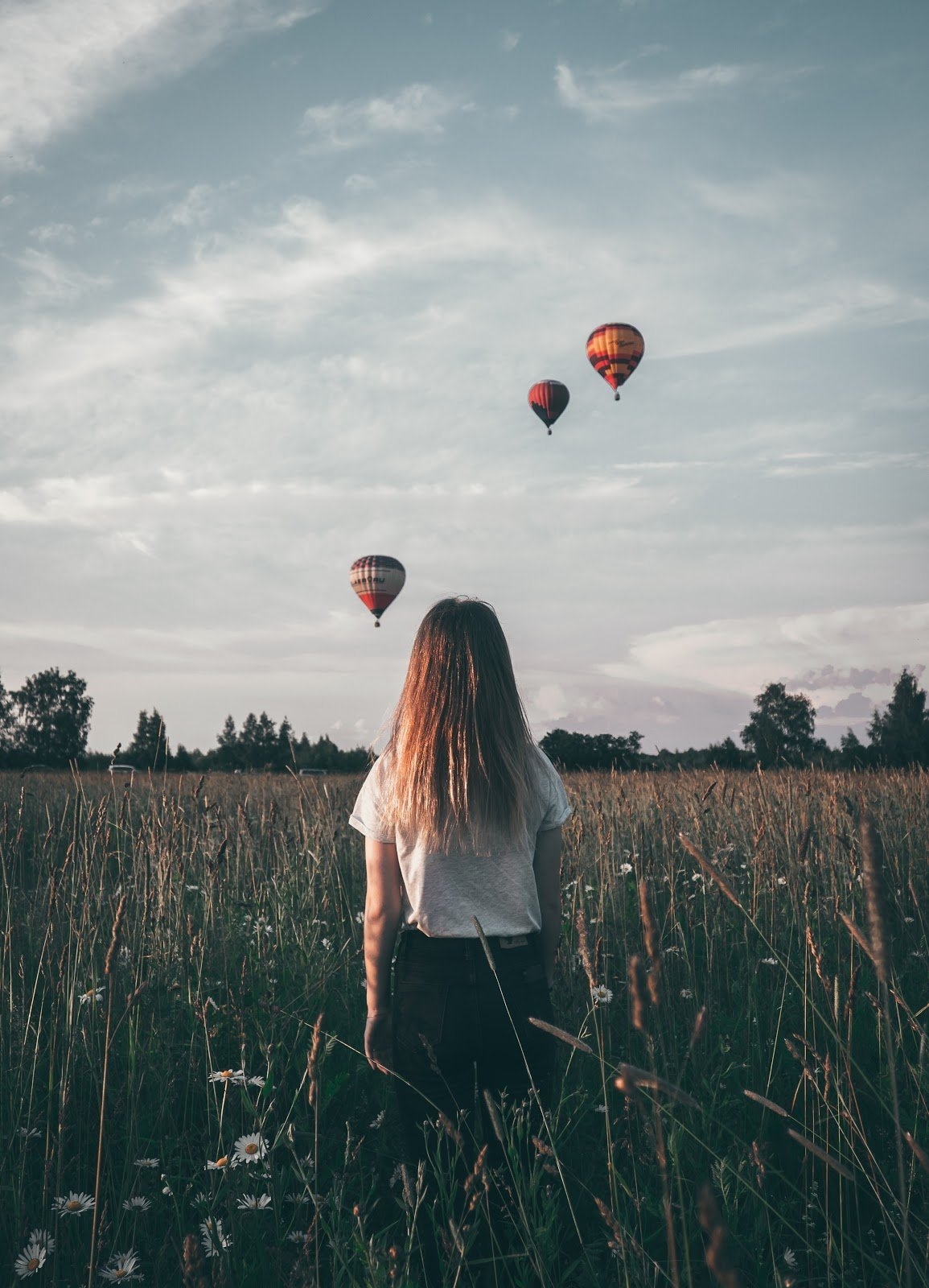Girl in a flower field with hot air balloons above by Naletu