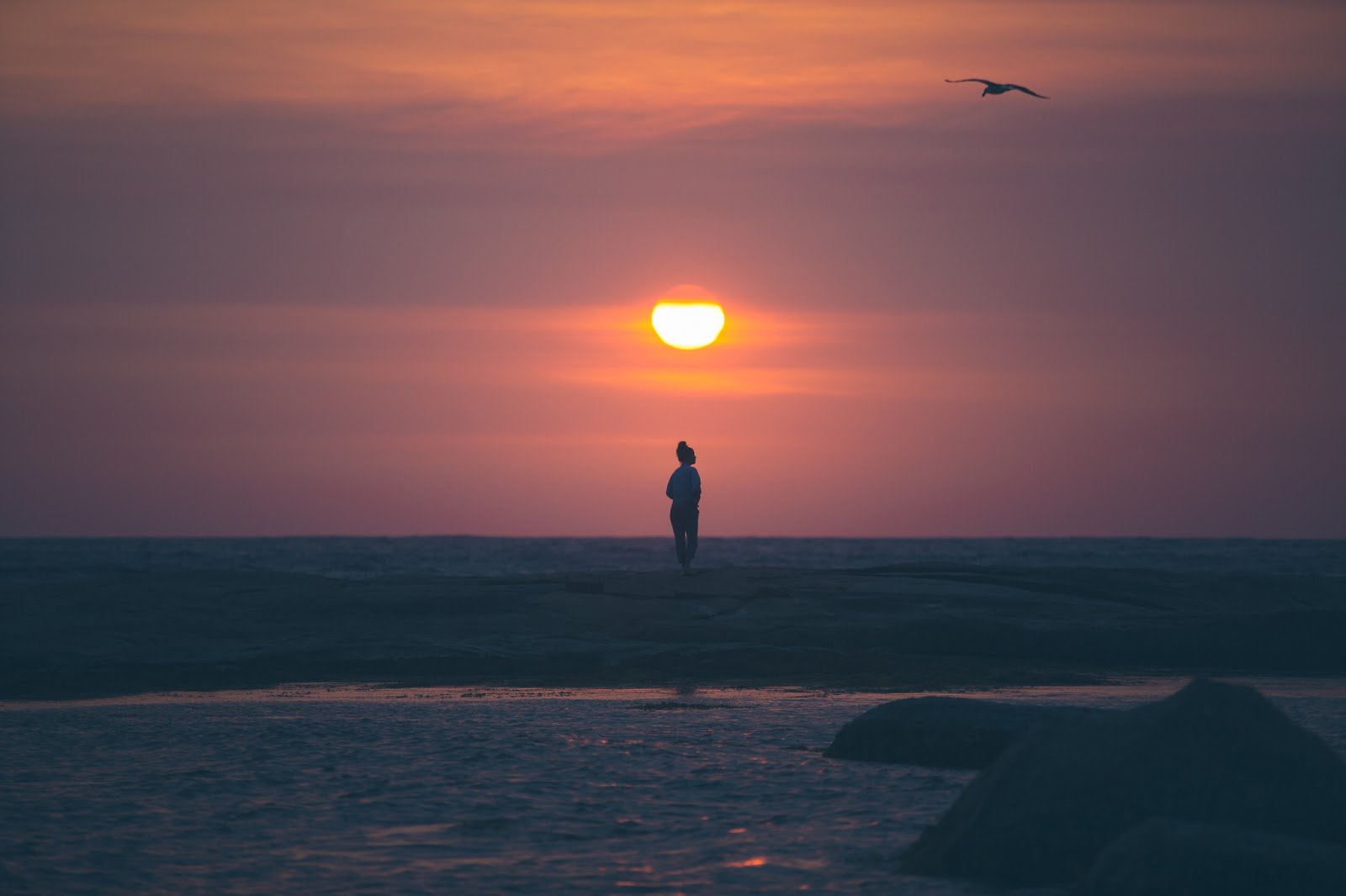 Person standing on a beach with a moon above him photo by Louise Coghill