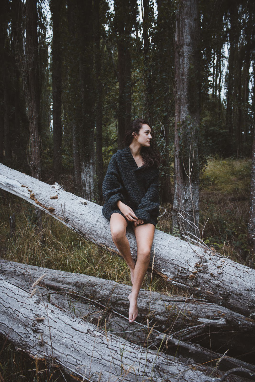 Young woman sitting on a big fallen tree in the forest photo by Jordan Heath