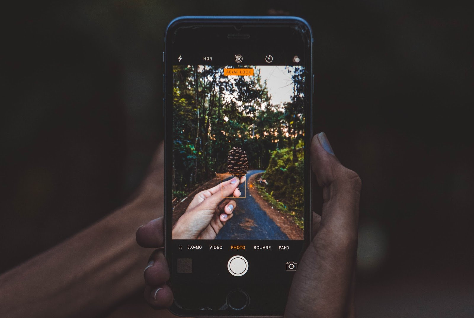 Hands holding a pinecone taking a picture using their phone on the other hand by Jatniel Tunon