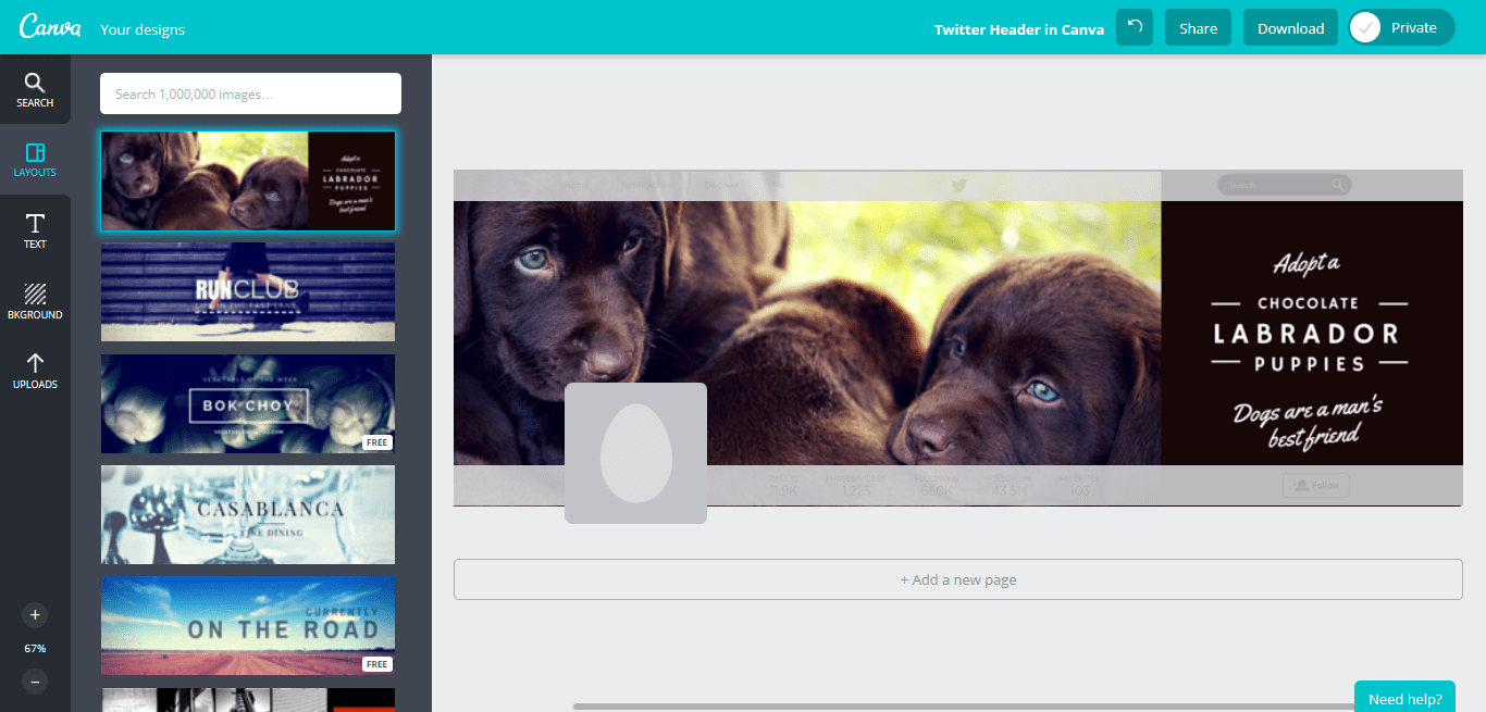 Create an Awesome Twitter Header in Canva