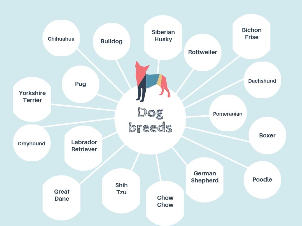 Blue Dog Bubble Map
