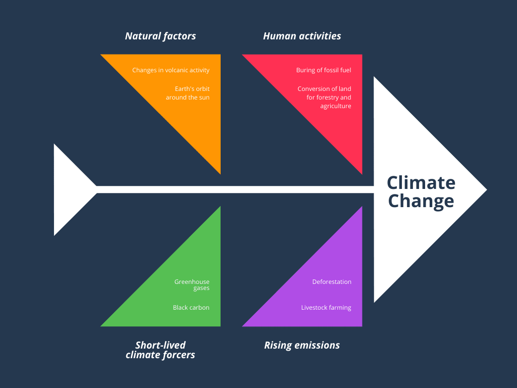 Colorful Climate Change Fishbone Diagram