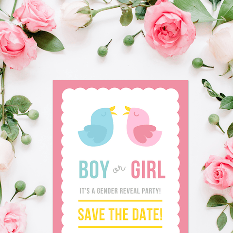 Gender Reveal Thumbnail